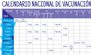 Calendario El Grafico 2019 Pdf.Portal Del Ministerio De Salud De La Nacion